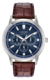 Citizen Eco-Drive BU2070-12L